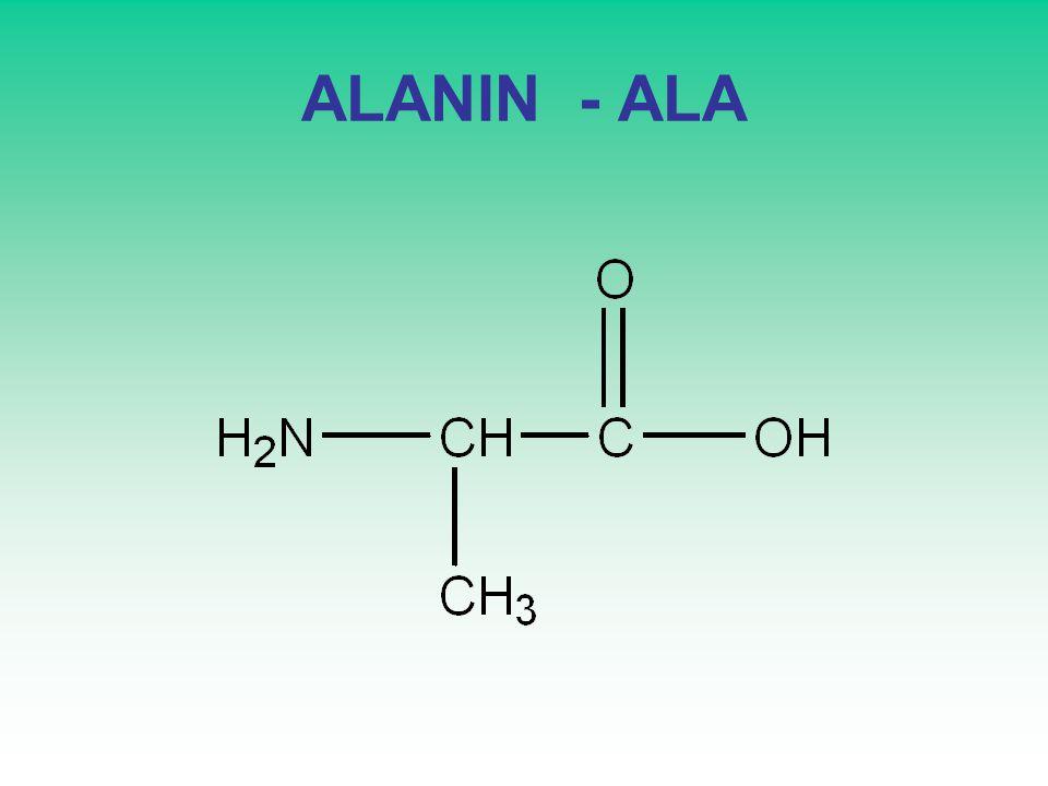 ALANIN - ALA