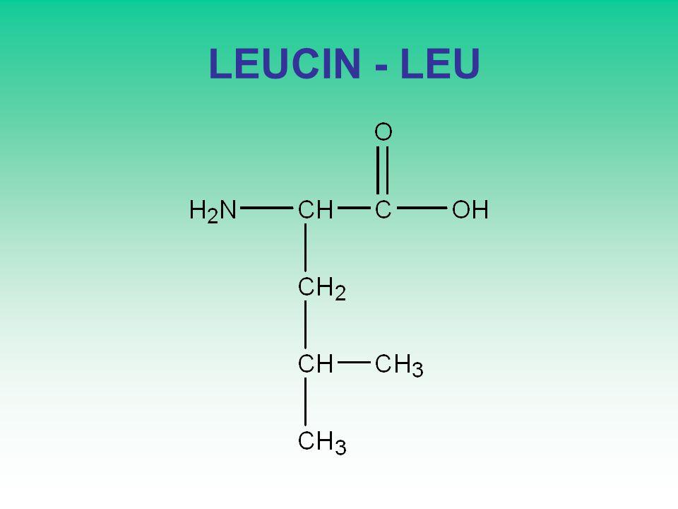 LEUCIN - LEU