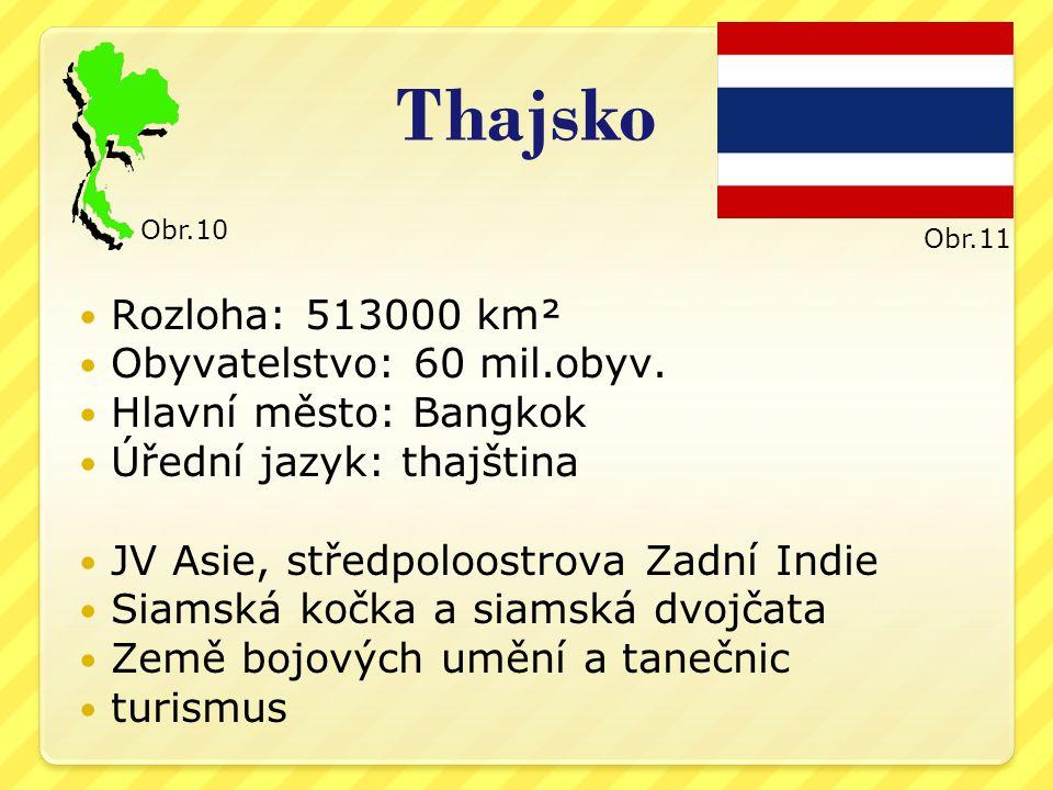 Thajsko Rozloha: 513000 km² Obyvatelstvo: 60 mil.obyv.