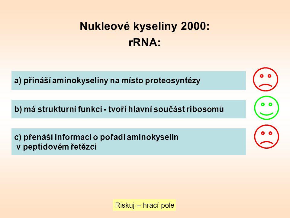 Nukleové kyseliny 2000: rRNA: a) přináší aminokyseliny na místo proteosyntézy b) má strukturní funkci - tvoří hlavní součást ribosomů c) přenáší infor