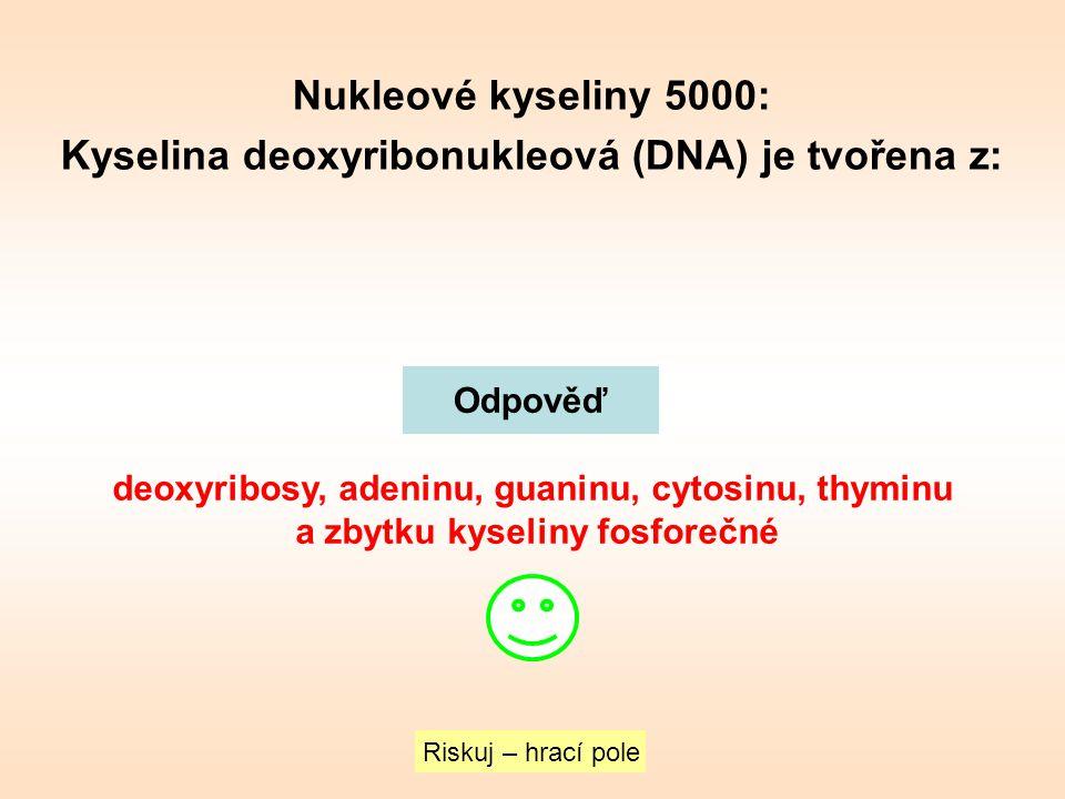 Nukleové kyseliny 5000: Kyselina deoxyribonukleová (DNA) je tvořena z: Riskuj – hrací pole Odpověď deoxyribosy, adeninu, guaninu, cytosinu, thyminu a