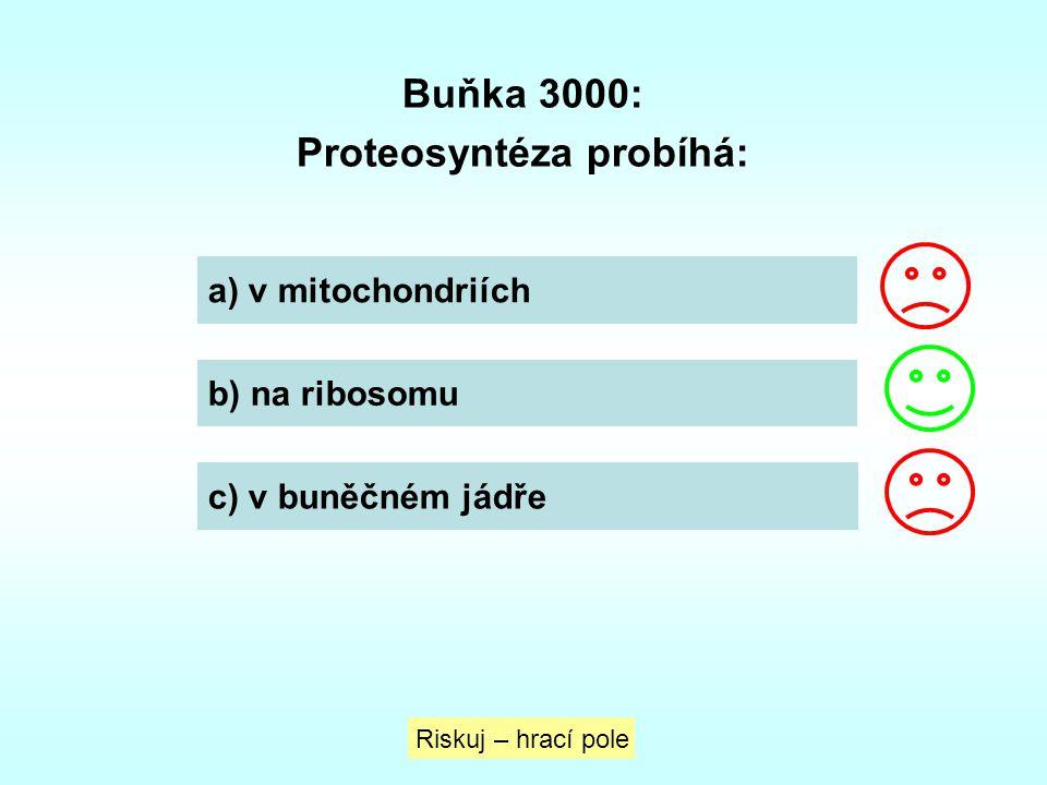 Buňka 3000: Proteosyntéza probíhá: a) v mitochondriích b) na ribosomu c) v buněčném jádře Riskuj – hrací pole