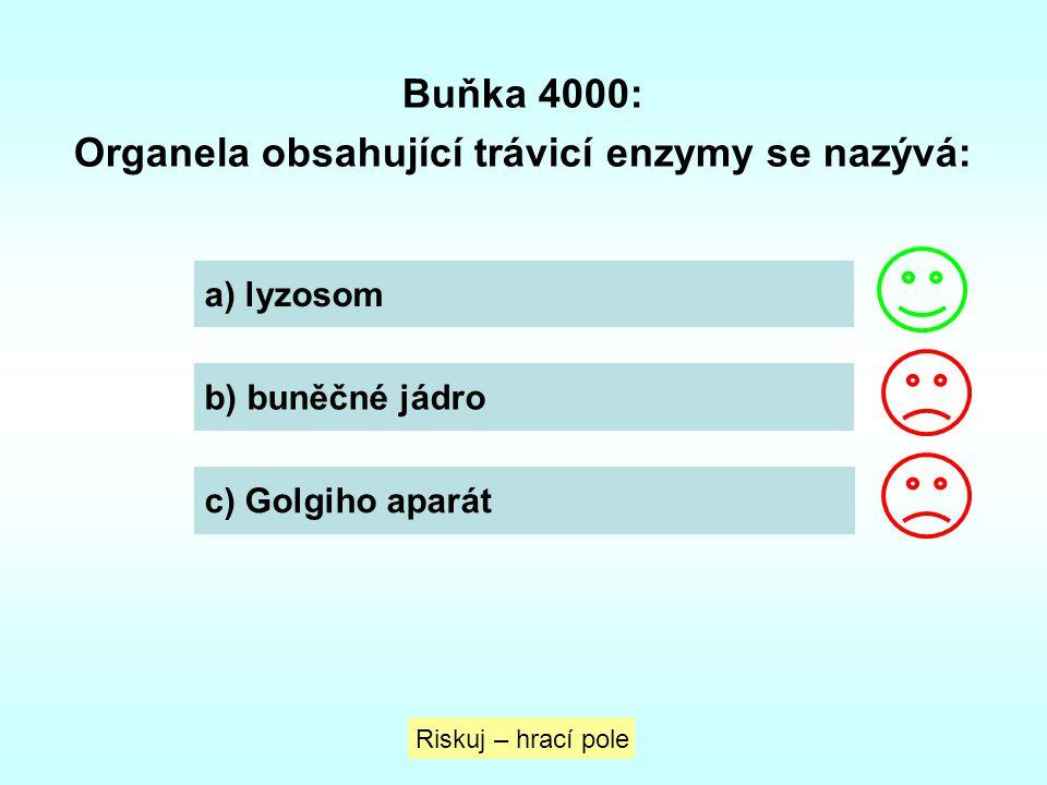 Buňka 4000: Organela obsahující trávicí enzymy se nazývá: a) lyzosom b) buněčné jádro c) Golgiho aparát Riskuj – hrací pole