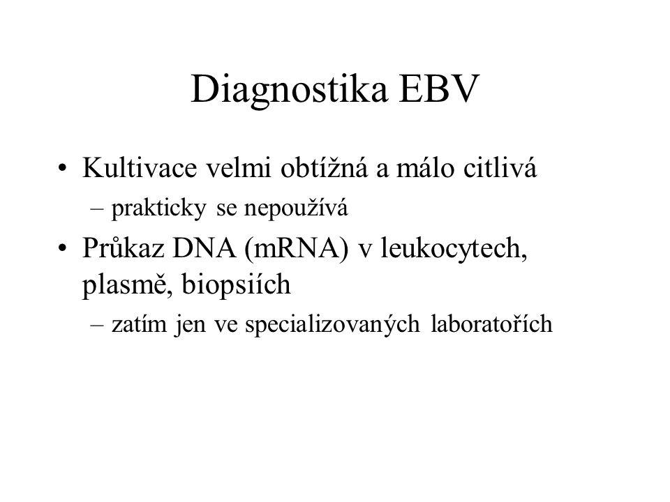 Diagnostika EBV Kultivace velmi obtížná a málo citlivá –prakticky se nepoužívá Průkaz DNA (mRNA) v leukocytech, plasmě, biopsiích –zatím jen ve specia