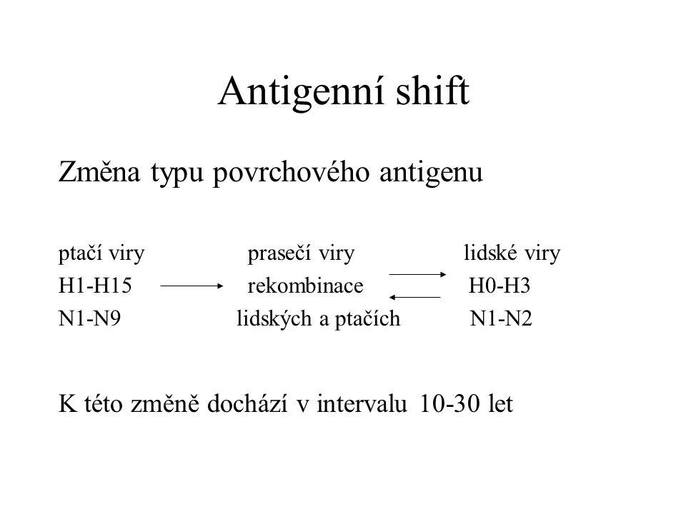 Antigenní shift Změna typu povrchového antigenu ptačí viry prasečí viry lidské viry H1-H15 rekombinace H0-H3 N1-N9 lidských a ptačích N1-N2 K této změ