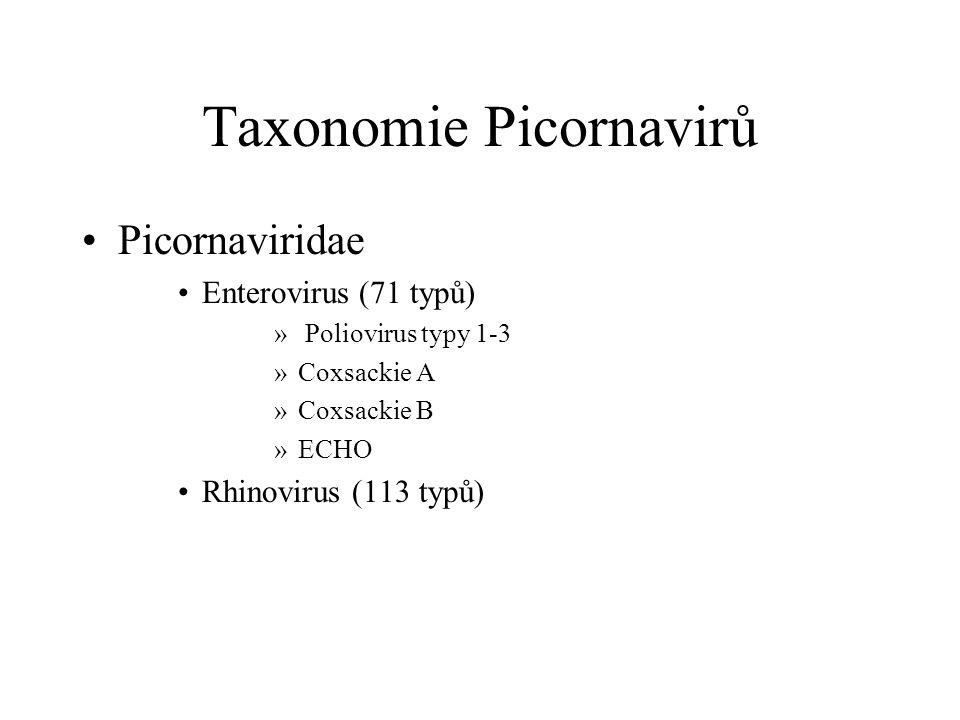 Taxonomie Picornavirů Picornaviridae Enterovirus (71 typů) » Poliovirus typy 1-3 »Coxsackie A »Coxsackie B »ECHO Rhinovirus (113 typů)