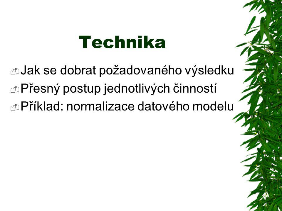 Technika  Jak se dobrat požadovaného výsledku  Přesný postup jednotlivých činností  Příklad: normalizace datového modelu