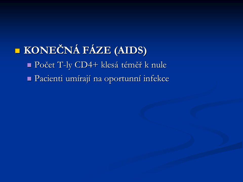 KONEČNÁ FÁZE (AIDS) KONEČNÁ FÁZE (AIDS) Počet T-ly CD4+ klesá téměř k nule Počet T-ly CD4+ klesá téměř k nule Pacienti umírají na oportunní infekce Pa
