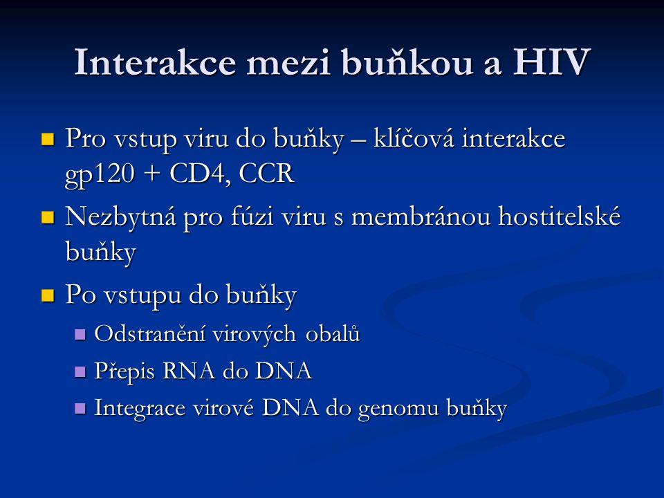 Interakce mezi buňkou a HIV Pro vstup viru do buňky – klíčová interakce gp120 + CD4, CCR Pro vstup viru do buňky – klíčová interakce gp120 + CD4, CCR
