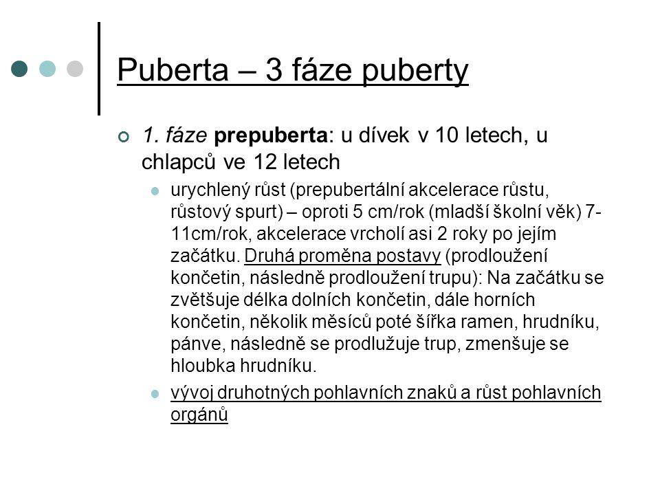 Puberta – 3 fáze puberty 1.