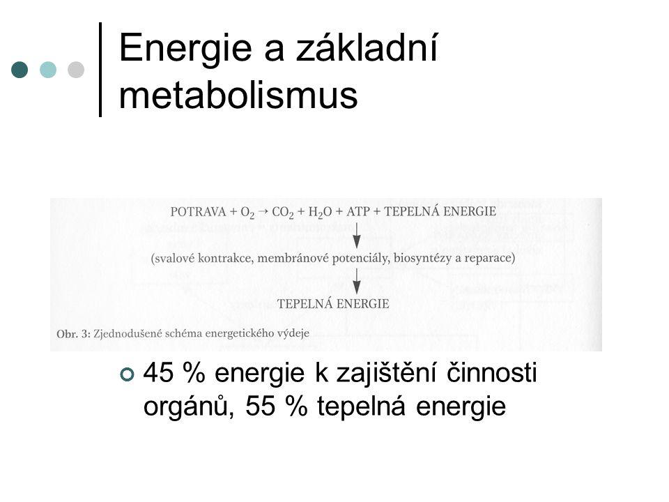 Energie a základní metabolismus 45 % energie k zajištění činnosti orgánů, 55 % tepelná energie