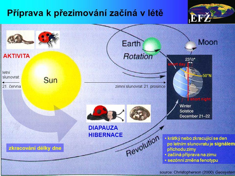 EFŽ zimní slunovrat: 21.prosince letní slunovrat: 21.