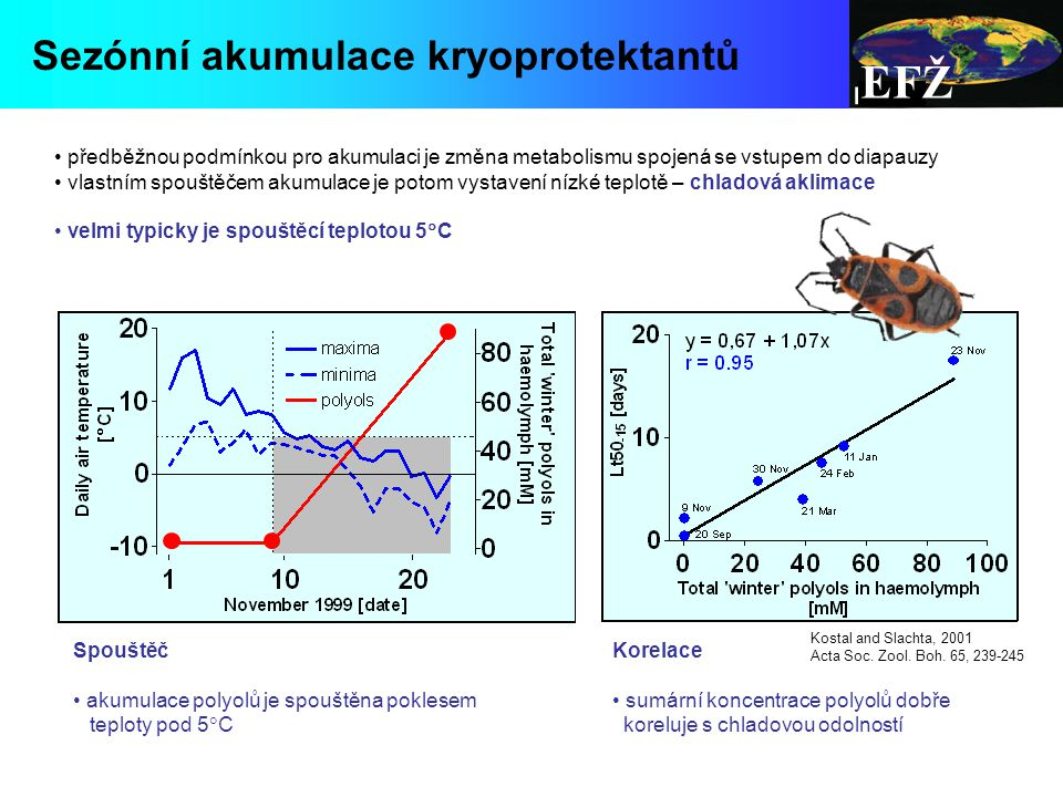 EFŽ Spouštěč akumulace polyolů je spouštěna poklesem teploty pod 5  C Korelace sumární koncentrace polyolů dobře koreluje s chladovou odolností Kostal and Slachta, 2001 Acta Soc.