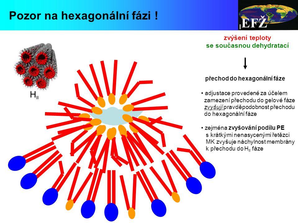 EFŽ Pozor na hexagonální fázi .