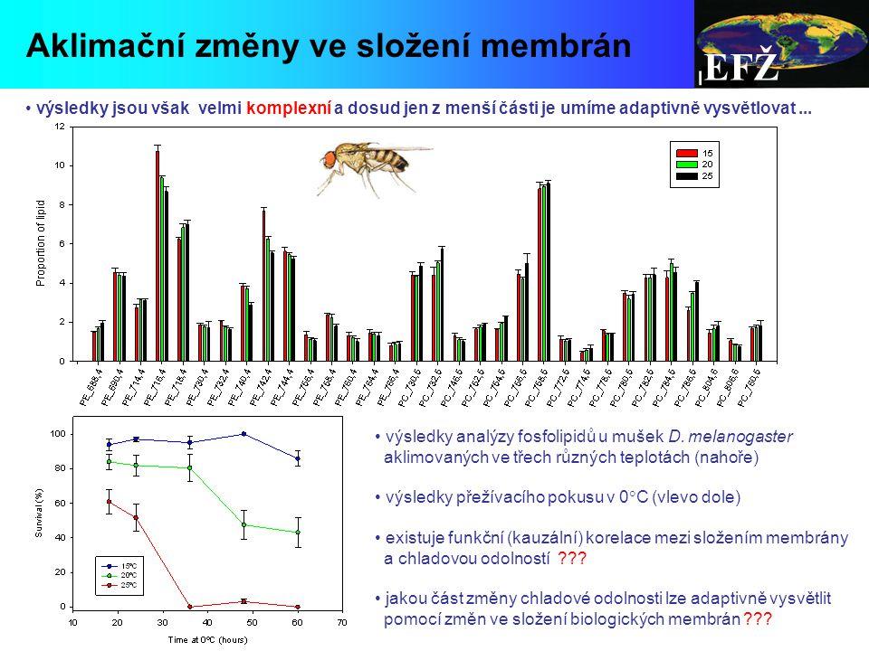 EFŽ výsledky jsou však velmi komplexní a dosud jen z menší části je umíme adaptivně vysvětlovat...
