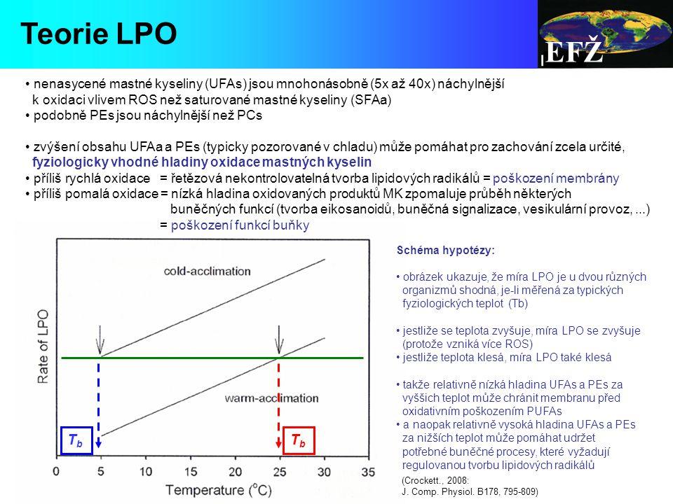 EFŽ nenasycené mastné kyseliny (UFAs) jsou mnohonásobně (5x až 40x) náchylnější k oxidaci vlivem ROS než saturované mastné kyseliny (SFAa) podobně PEs jsou náchylnější než PCs zvýšení obsahu UFAa a PEs (typicky pozorované v chladu) může pomáhat pro zachování zcela určité, fyziologicky vhodné hladiny oxidace mastných kyselin příliš rychlá oxidace = řetězová nekontrolovatelná tvorba lipidových radikálů = poškození membrány příliš pomalá oxidace = nízká hladina oxidovaných produktů MK zpomaluje průběh některých buněčných funkcí (tvorba eikosanoidů, buněčná signalizace, vesikulární provoz,...) = poškození funkcí buňky Schéma hypotézy: obrázek ukazuje, že míra LPO je u dvou různých organizmů shodná, je-li měřená za typických fyziologických teplot (Tb) jestliže se teplota zvyšuje, míra LPO se zvyšuje (protože vzniká více ROS) jestliže teplota klesá, míra LPO také klesá takže relativně nízká hladina UFAs a PEs za vyššich teplot může chránit membranu před oxidativním poškozením PUFAs a naopak relativně vysoká hladina UFAs a PEs za nižších teplot může pomáhat udržet potřebné buněčné procesy, které vyžadují regulovanou tvorbu lipidových radikálů (Crockett., 2008: J.