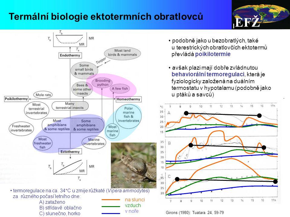 EFŽ Termální biologie ektotermních obratlovců podobně jako u bezobratlých, také u terestrických obratlovčích ektotermů převládá poikilotermie avšak plazi mají dobře zvládnutou behaviorální termoregulaci, která je fyziologicky založená na duálním termostatu v hypotalamu (podobně jako u ptáků a savců) termoregulace na ca.