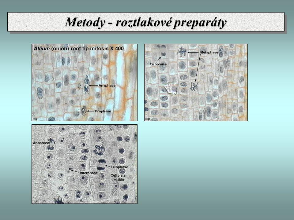 Metody - průtoková cytometrie