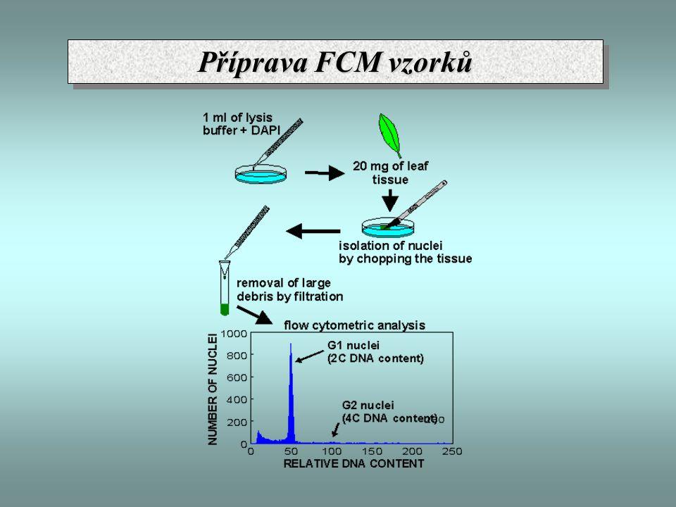 Příprava FCM vzorků