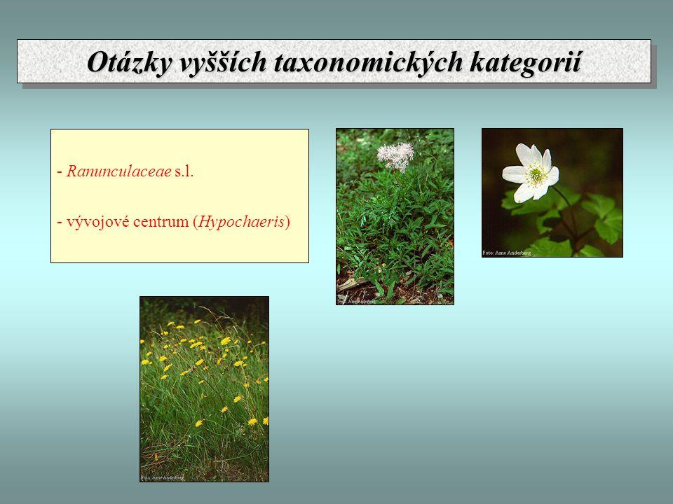 - Ranunculaceae s.l. - vývojové centrum (Hypochaeris) Otázky vyšších taxonomických kategorií