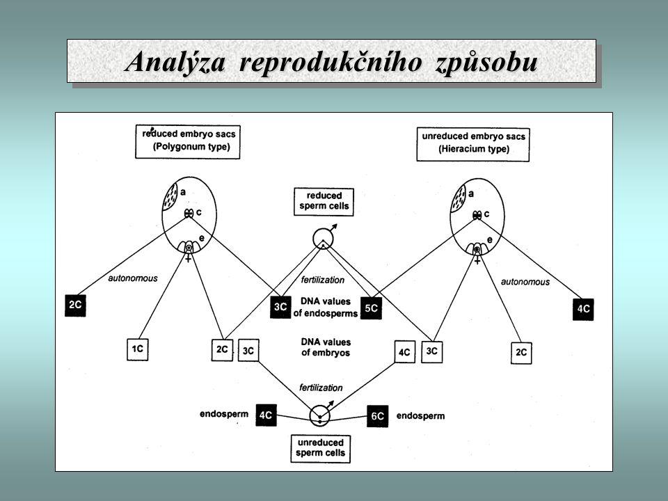 Analýza reprodukčního způsobu