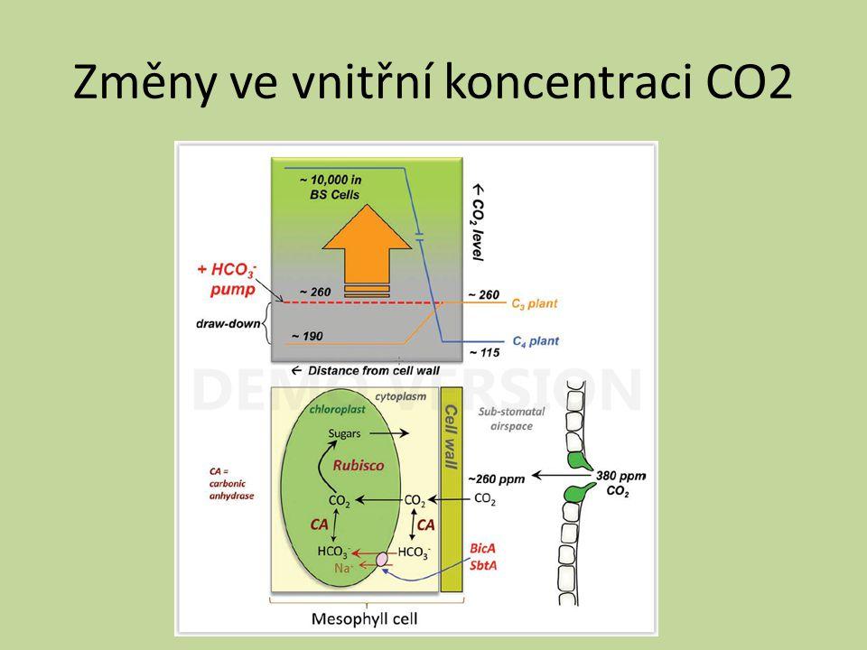 Změny ve vnitřní koncentraci CO2