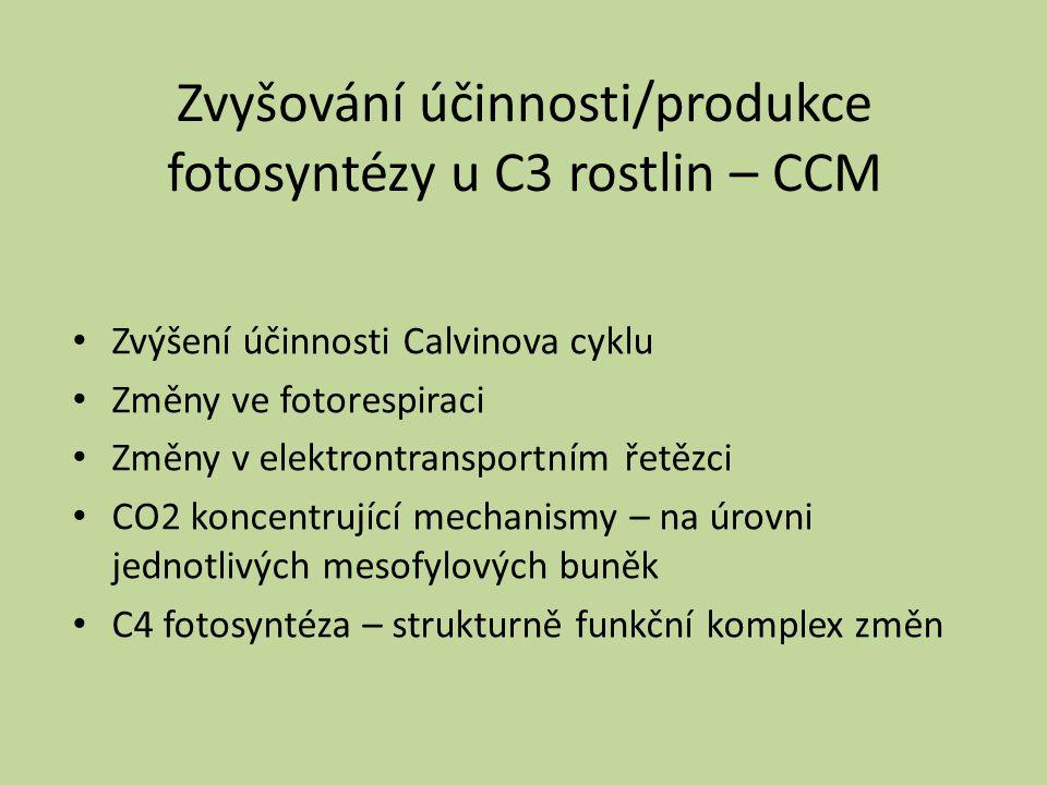Zvyšování účinnosti/produkce fotosyntézy u C3 rostlin – CCM Zvýšení účinnosti Calvinova cyklu Změny ve fotorespiraci Změny v elektrontransportním řetě