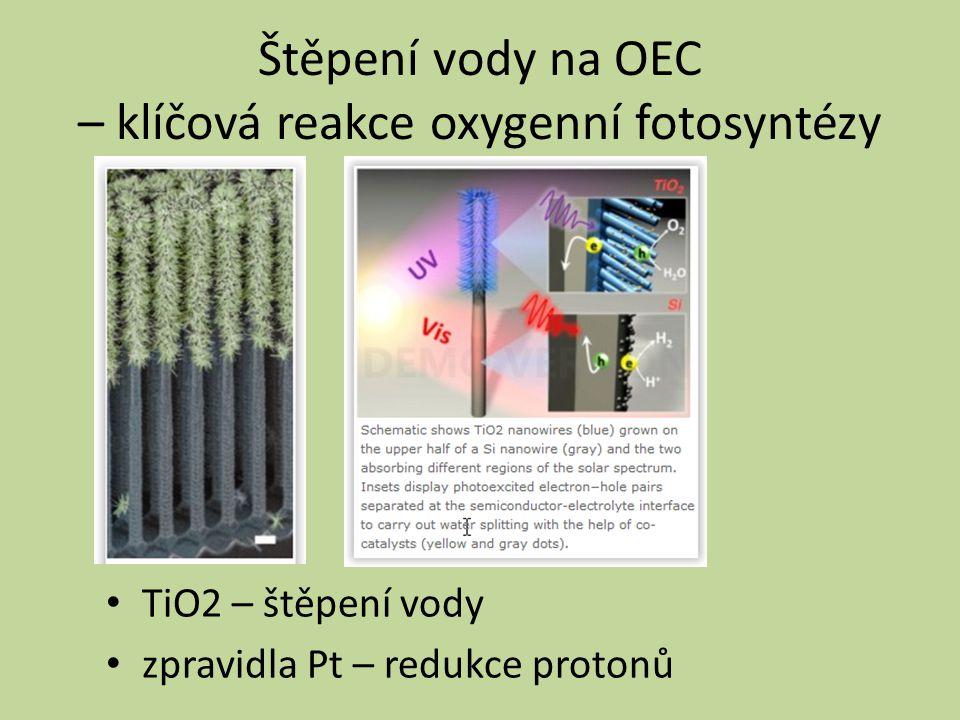Štěpení vody na OEC – klíčová reakce oxygenní fotosyntézy TiO2 – štěpení vody zpravidla Pt – redukce protonů