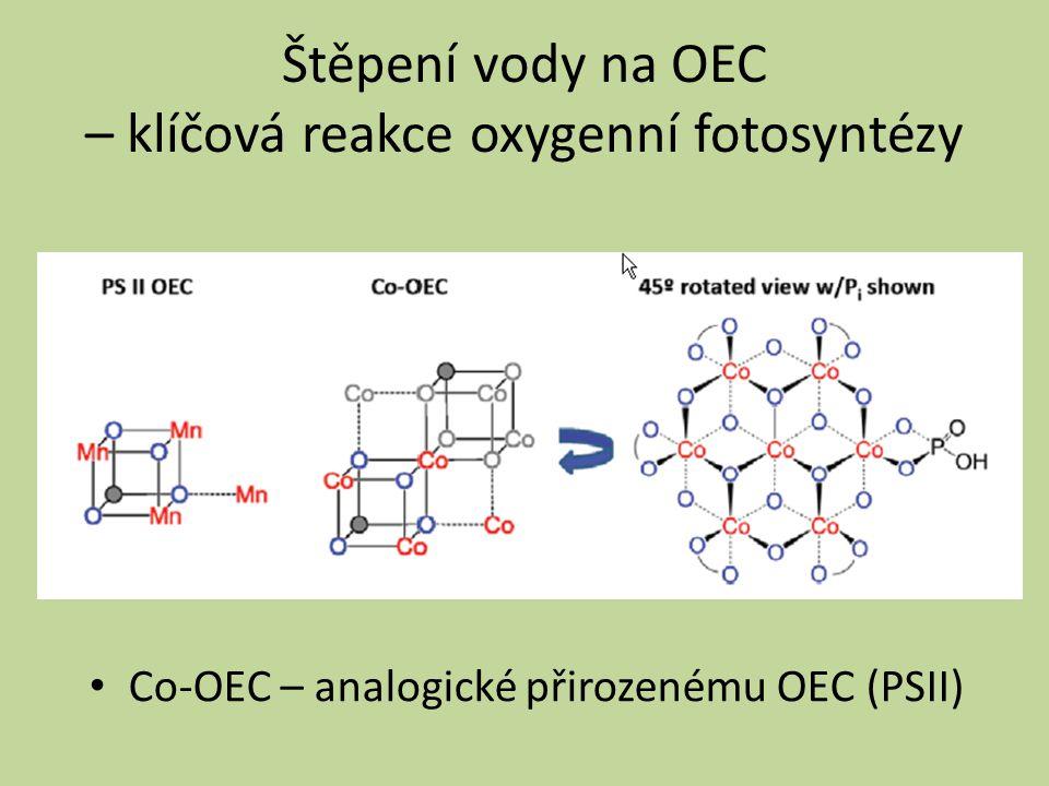 Štěpení vody na OEC – klíčová reakce oxygenní fotosyntézy Co-OEC – analogické přirozenému OEC (PSII)