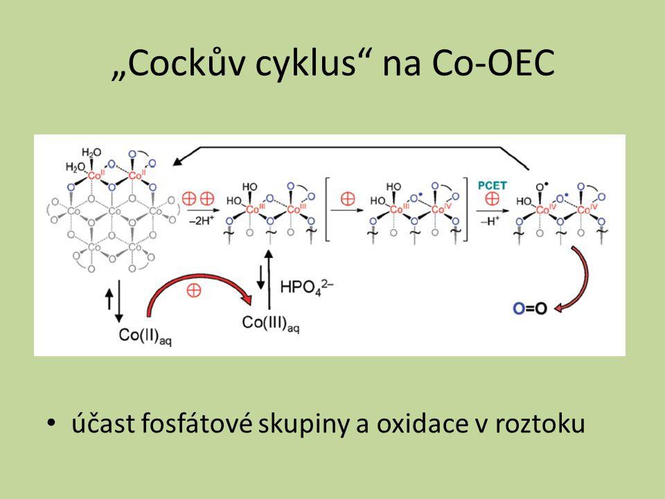 """""""Cockův cyklus"""" na Co-OEC účast fosfátové skupiny a oxidace v roztoku"""