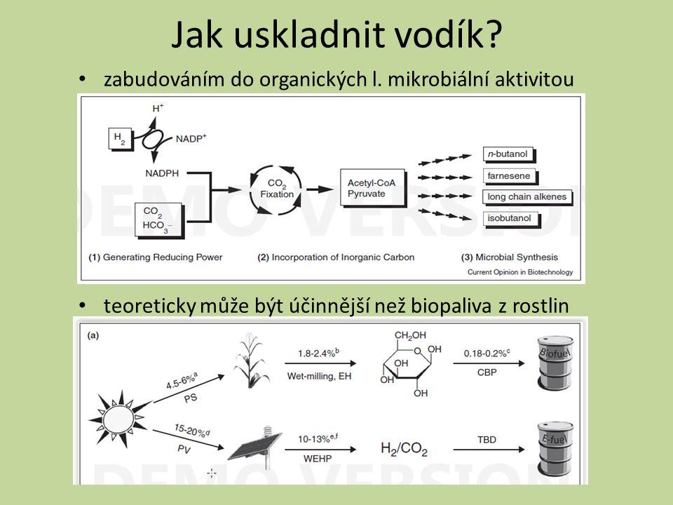Jak uskladnit vodík? zabudováním do organických l. mikrobiální aktivitou teoreticky může být účinnější než biopaliva z rostlin