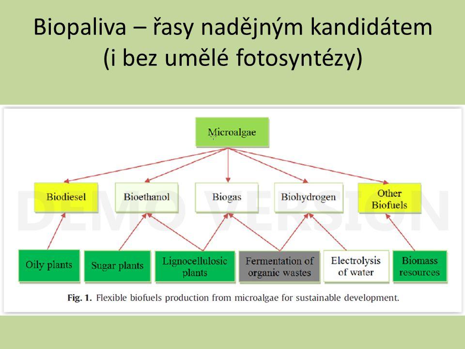 Biopaliva – řasy nadějným kandidátem (i bez umělé fotosyntézy)