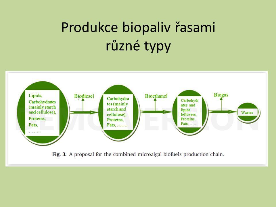 Produkce biopaliv řasami různé typy