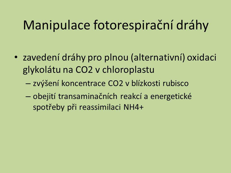 Manipulace fotorespirační dráhy zavedení dráhy pro plnou (alternativní) oxidaci glykolátu na CO2 v chloroplastu – zvýšení koncentrace CO2 v blízkosti