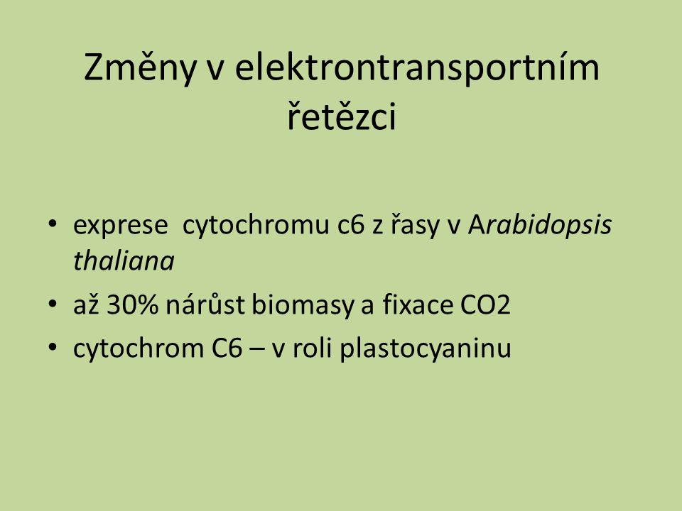 Změny v elektrontransportním řetězci exprese cytochromu c6 z řasy v Arabidopsis thaliana až 30% nárůst biomasy a fixace CO2 cytochrom C6 – v roli plas
