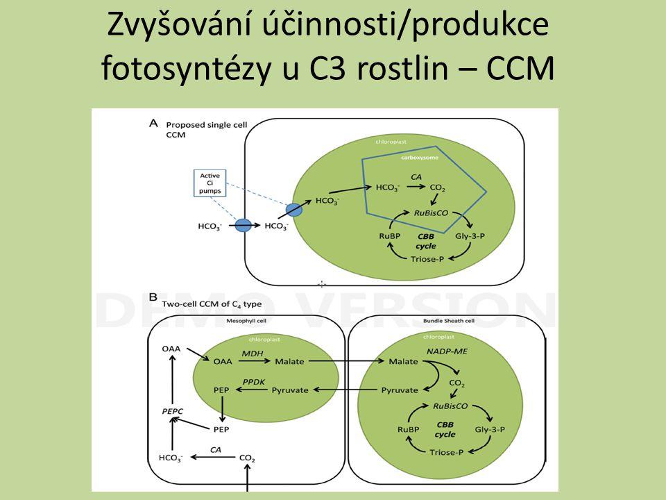 CO2 concentrating mechanisms - v jednotlivých buňkách zabudování transportérů HCO3- do membrány plastidů samostatně – snížení kompenzační koncentrace CO2, zvýšení aktivity rubisco a zlepšený růst v prostředí se suchým vzduchem (u Arabidopsis) v kombinaci s dalšími modifikacemi (analogicky pyrenoidu řas či karboxyzómu sinic)