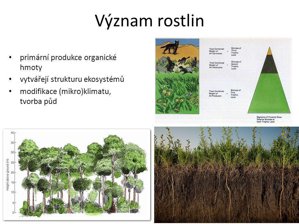 Význam rostlin primární produkce organické hmoty vytvářejí strukturu ekosystémů modifikace (mikro)klimatu, tvorba půd