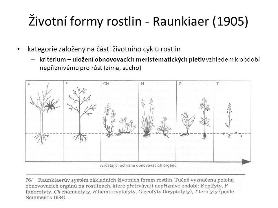 Životní formy rostlin - Raunkiaer (1905) kategorie založeny na části životního cyklu rostlin – kritérium – uložení obnovovacích meristematických pleti