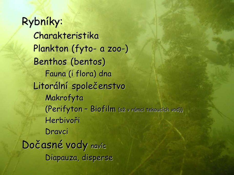 Rybníky:Charakteristika Plankton (fyto- a zoo-) Benthos (bentos) Fauna (i flora) dna Litorální společenstvo Makrofyta (Perifyton – Biofilm (až v rámci