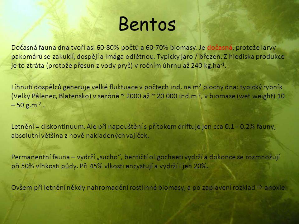 Bentos Dočasná fauna dna tvoří asi 60-80% počtů a 60-70% biomasy. Je dočasná, protože larvy pakomárů se zakuklí, dospějí a imága odlétnou. Typicky jar