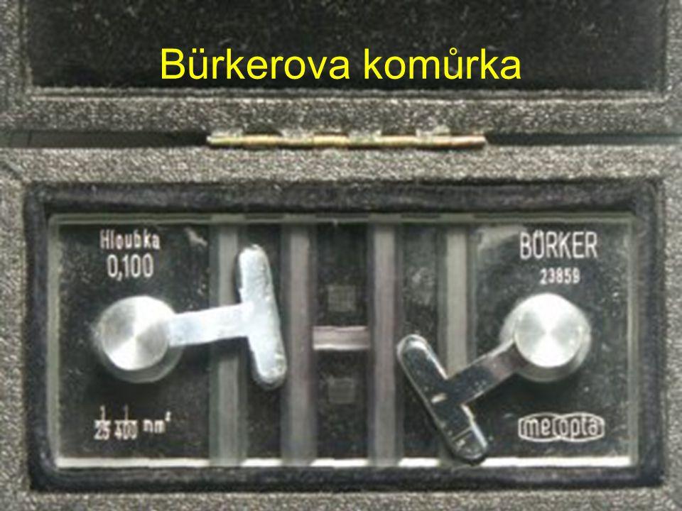 Bürkerova komůrka