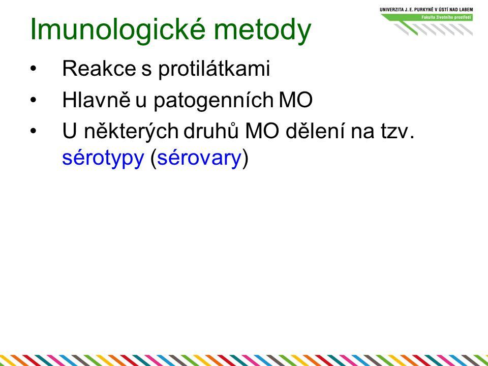 Imunologické metody Reakce s protilátkami Hlavně u patogenních MO U některých druhů MO dělení na tzv.