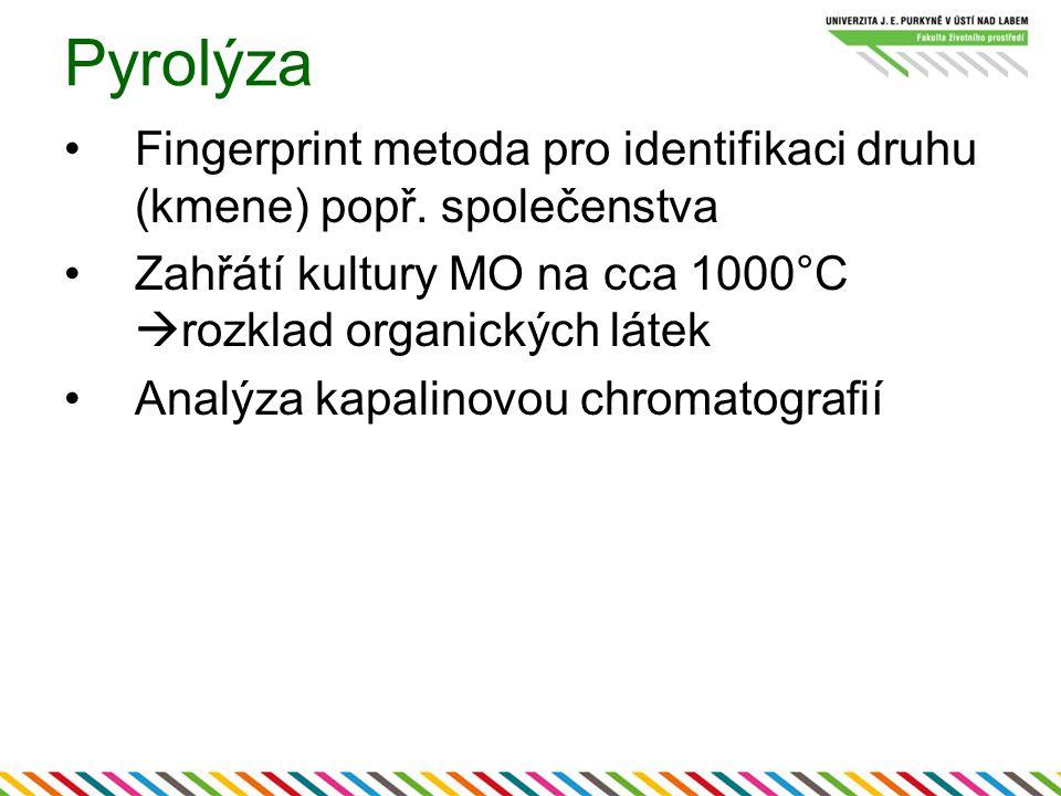 Pyrolýza Fingerprint metoda pro identifikaci druhu (kmene) popř.