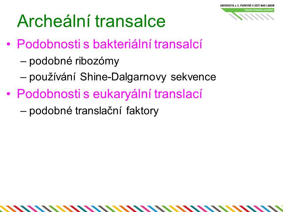 Archeální transalce Podobnosti s bakteriální transalcí –podobné ribozómy –používání Shine-Dalgarnovy sekvence Podobnosti s eukaryální translací –podob