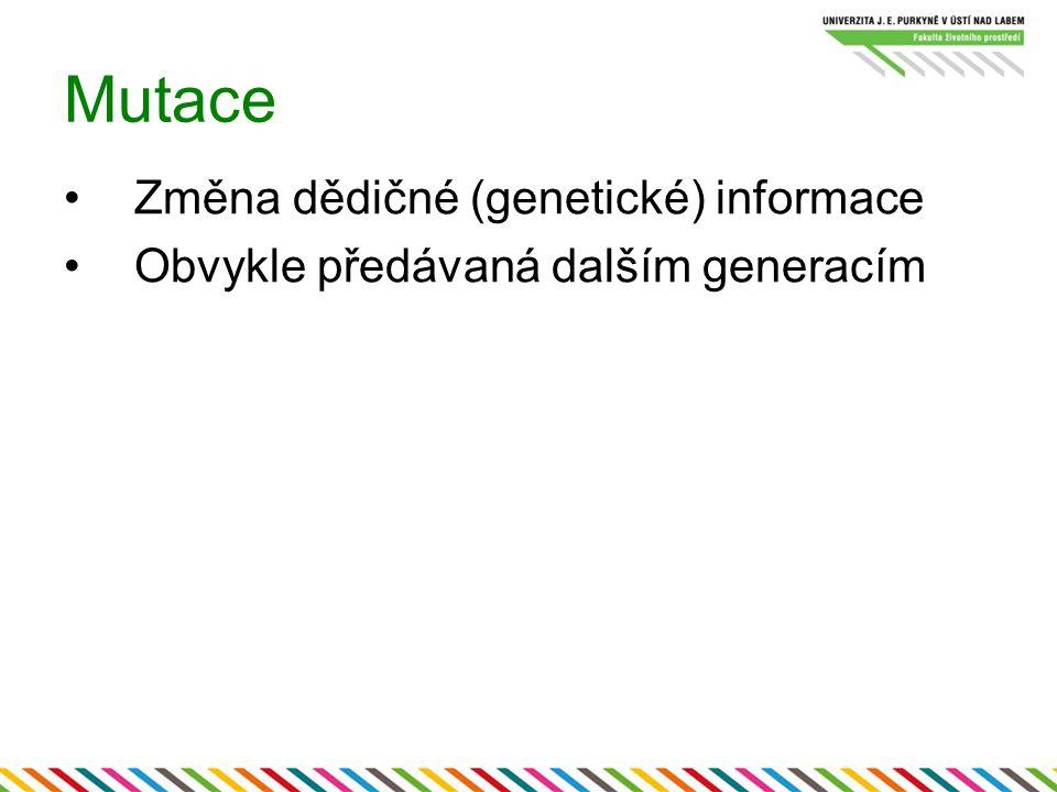 Mutace Změna dědičné (genetické) informace Obvykle předávaná dalším generacím