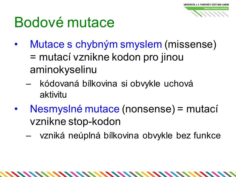 Bodové mutace Mutace s chybným smyslem (missense) = mutací vznikne kodon pro jinou aminokyselinu –kódovaná bílkovina si obvykle uchová aktivitu Nesmys