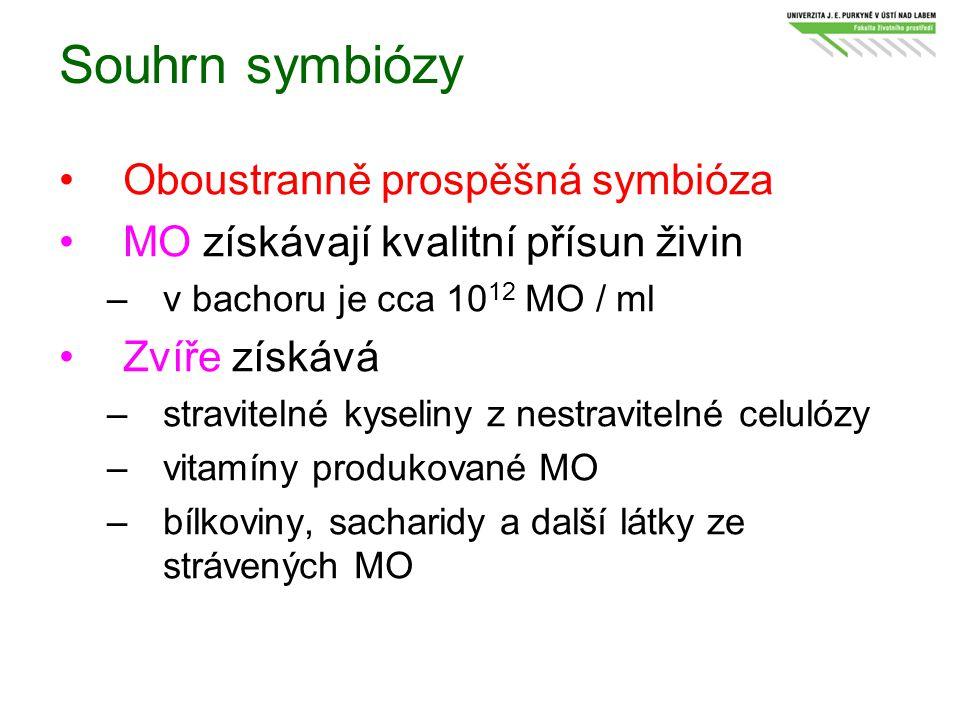 Souhrn symbiózy Oboustranně prospěšná symbióza MO získávají kvalitní přísun živin –v bachoru je cca 10 12 MO / ml Zvíře získává –stravitelné kyseliny