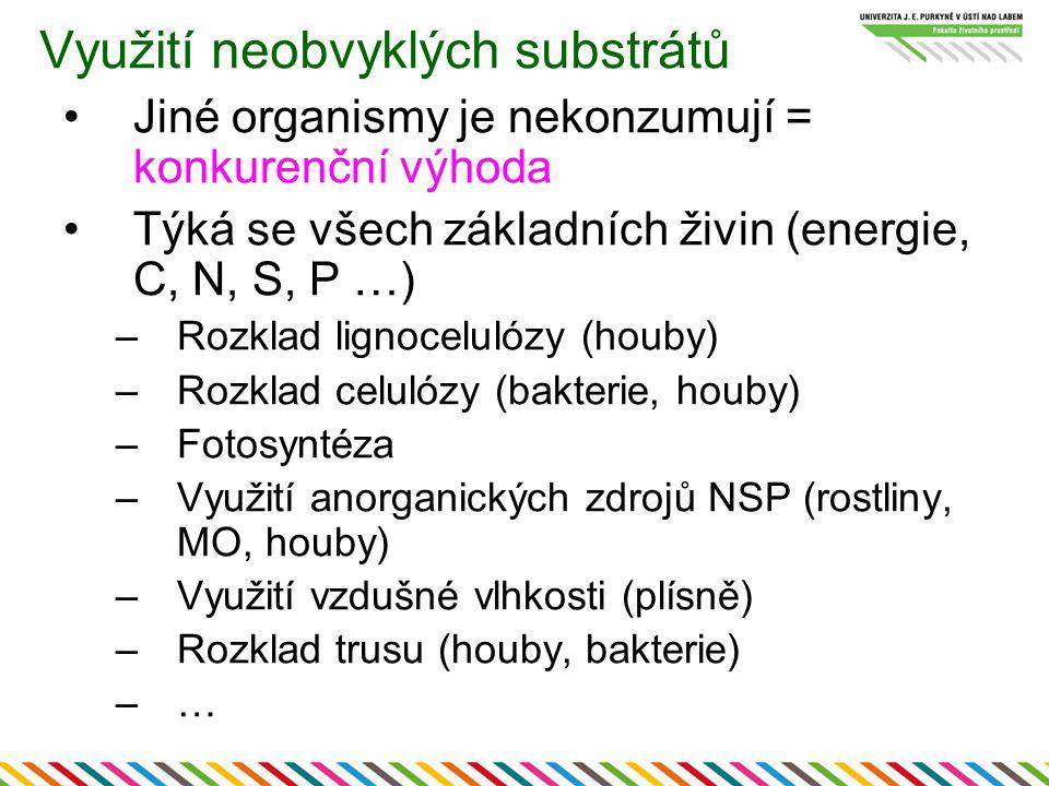 Využití neobvyklých substrátů Jiné organismy je nekonzumují = konkurenční výhoda Týká se všech základních živin (energie, C, N, S, P …) –Rozklad ligno