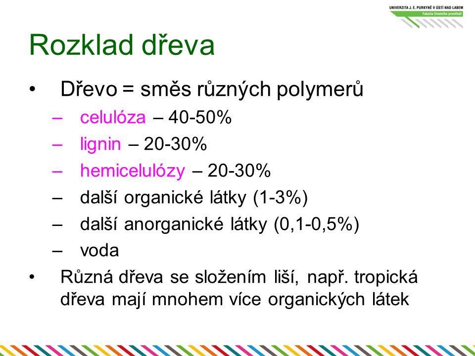 Rozklad dřeva Dřevo = směs různých polymerů –celulóza – 40-50% –lignin – 20-30% –hemicelulózy – 20-30% –další organické látky (1-3%) –další anorganick