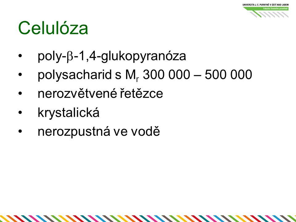 Celulóza poly-  -1,4-glukopyranóza polysacharid s M r 300 000 – 500 000 nerozvětvené řetězce krystalická nerozpustná ve vodě